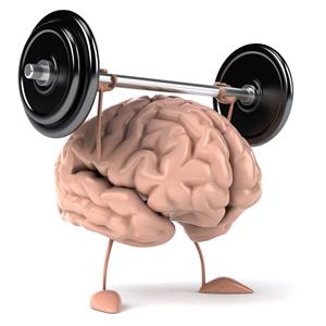 brain-30