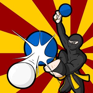 tt-ninja-30